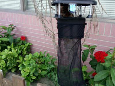 CCFL-UV電球 ファン型捕虫器 代理店募集
